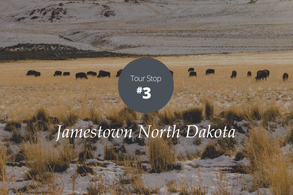 Jamestown North Dakota Talking Trail